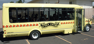 Hawaii Bus Tours